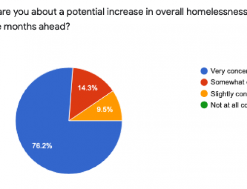 Winter, Covid, Homelessness Survey